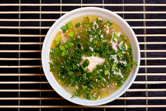 Soup with greenery Stock Image