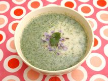 Soup of Herbs Stock Images