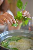 Soup hot pot. Thai people put the vegetable into Soup hot pot, asian cuisine restaurant Royalty Free Stock Photography