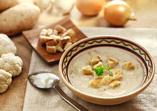 Soup and ingredients Royalty Free Stock Image