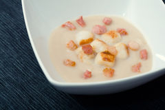 Soup of Jerusalem artichokes and scallops. On a dark blue background Royalty Free Stock Photography