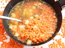 Soup of lentils Stock Image