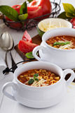 Soup with lentils, pasta and tomatoes Royalty Free Stock Photos