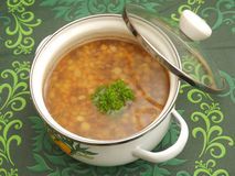 Soup of lentisl Stock Images