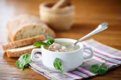 Soup with meat and noodles Royalty Free Stock Image