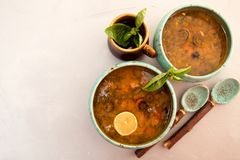 Solyanka soup with meat, smoked meat, sausages, pickled cucumber Stock Photography