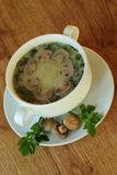 Soup med champinjoner och parsley Royaltyfri Foto