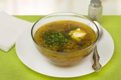 Soup med nya kål och champinjoner Arkivfoto