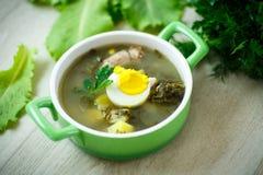 Soup med sorrel royaltyfria foton