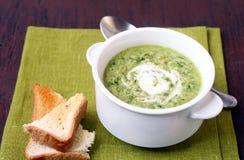soup med yoghurt arkivbilder