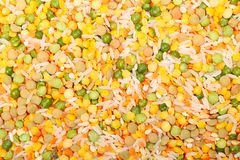 Soup medley Stock Images