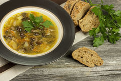 Soup with mushroom and bread Royalty Free Stock Photos