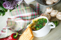 Soup with mushrooms and cheese Stock Photography