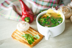 Soup with mushrooms and cheese Stock Images