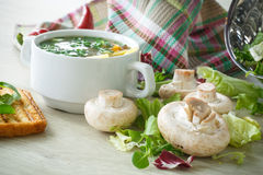 Soup with mushrooms and cheese Royalty Free Stock Photo
