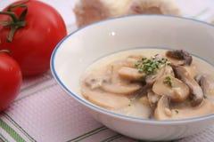 Soup of mushrooms Stock Image