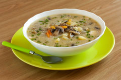 Soup with mushrooms and  vegetables. In color plate Royalty Free Stock Photos