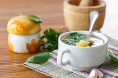 Soup with mushrooms Stock Photo