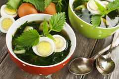 Soup of nettles stock photos