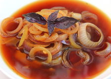 Soup of onions Royalty Free Stock Photography