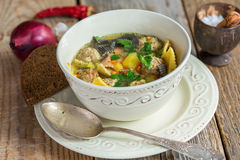 Soup with pasta and meatballs turkey. Stock Photography