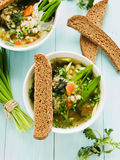 Soup. With pearl barley, nettle, carrot and leek. Shallow dof Royalty Free Stock Photography
