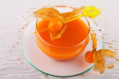 Soup and physalis 3 Stock Images