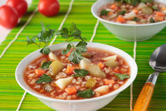 Soup with pickled cucumbers, barley  and tomato paste in bowl Stock Photography