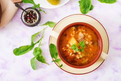 Soup with pickled cucumbers and pearl barley - rassolnik on a light background. Royalty Free Stock Photography