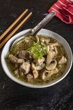 Soup with pieces of pork and mushrooms. royalty free stock images