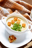Soup with pieces of toasted bread and parsley. Stock Image