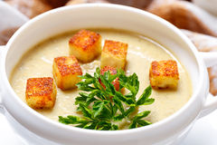 soup with pieces of toasted bread and parsley. Royalty Free Stock Photos
