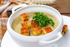 soup with pieces of toasted bread and parsley. Royalty Free Stock Image