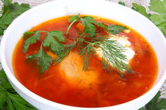 Soup in a plate. Red hot soup with greens in a white plate Royalty Free Stock Photos