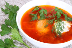Soup in a plate. Red hot soup with greens in a white plate Stock Images