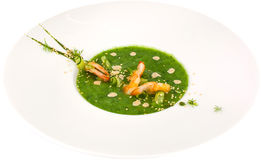 Soup puree of spinach with shrimp on white background royalty free stock images