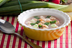Soup with radishes Royalty Free Stock Photo