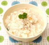 Soup of rice and fish Royalty Free Stock Photos