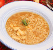 Soup of rice and meat Royalty Free Stock Photos