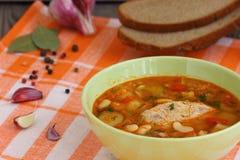 Soup. Russian-ukraine cuisine - borsch Shallow DOF stock photo