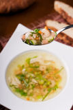 Soup with shrimps Stock Image