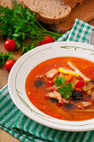 Soup solyanka Russian with meat, olives and gherkins. In bowl royalty free stock photos