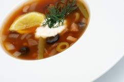 Soup Solyanka Royalty Free Stock Photos