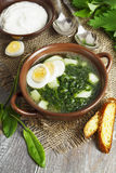 Soup of sorrel and nettles with eggs. Soup of sorrel and nettles on the table Royalty Free Stock Image