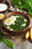 Soup of sorrel and nettles with eggs Stock Images
