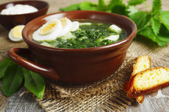 Soup of sorrel and nettles with eggs. Soup of sorrel and nettles on the table Stock Photo