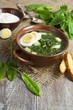 Soup of sorrel and nettles with eggs. Soup of sorrel and nettles on the table royalty free stock photos