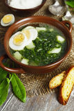 Soup of sorrel and nettles with eggs. Soup of sorrel and nettles on the table stock photos