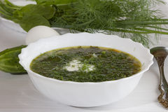 Soup with sorrel Royalty Free Stock Images
