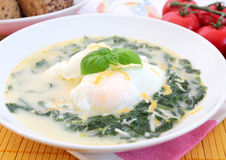 Soup of spinach Stock Image